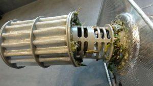 Nguyên nhân dẫn đến mùi khó chịu trong máy rửa chén bát - Finish Việt Nam